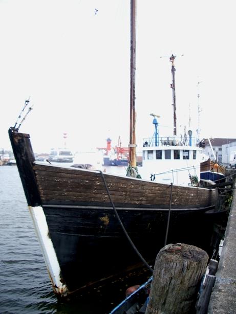 bateau moteur occasion sans chalutier 75 pieds 6 po  23