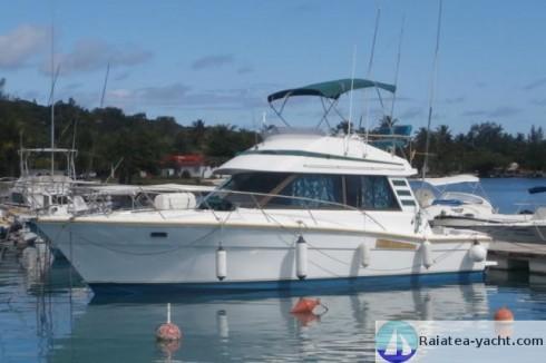 Moteur bateau inboard diesel occasion